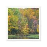 Seven Springs Fall Bridge II Autumn Landscape Napkin