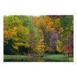 Seven Springs Fall Bridge II Autumn Landscape Poster