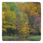 Seven Springs Fall Bridge II Autumn Landscape Trivet
