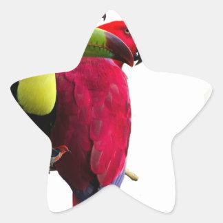 Seven Tropical Bird's Star Sticker