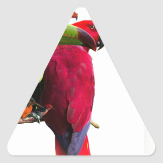 Seven Tropical Bird's Triangle Sticker