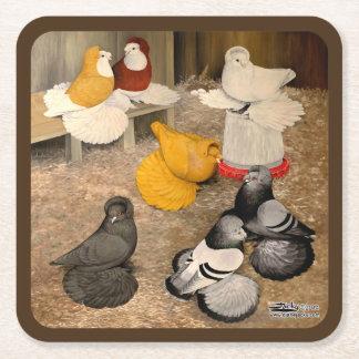 Seven Trumpeter Pigeons Square Paper Coaster