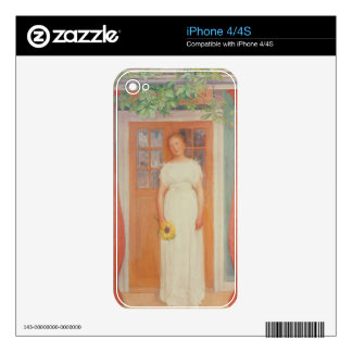 Seventeen Decals For iPhone 4S