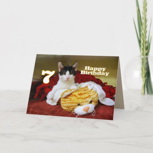 Seventh Birthday Kitten with Toy Tiger Card