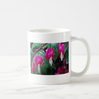Several flowers of bleeding heart plant and water classic white coffee mug