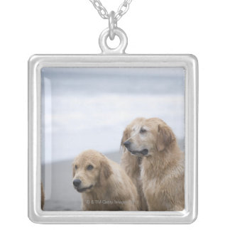 Several Golden retrievers sitting on beach Silver Plated Necklace