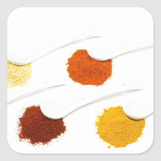 Several seasoning spices on porcelain spoons square sticker