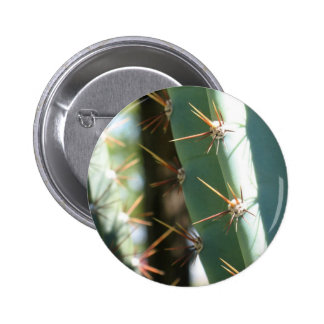 Several Thorns On A Cactus Pinback Button