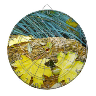 Several yellow autumn leaves with a blurred backgr dartboard with darts
