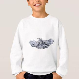 SeveralDecorativeTassels112611 Sweatshirt