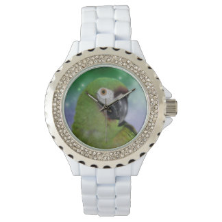 Severe Macaw Parrot Animal Wrist Watches