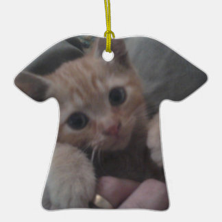Sevi el gatito del jengibre adornos