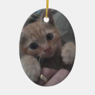 Sevi el gatito del jengibre ornamento de reyes magos