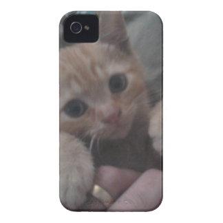 Sevi el gatito del jengibre iPhone 4 cobertura