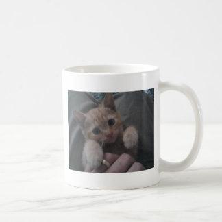 Sevi the Ginger Kitten Coffee Mug