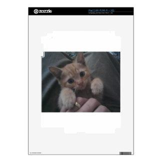 Sevi the Ginger Kitten Decal For iPad 2