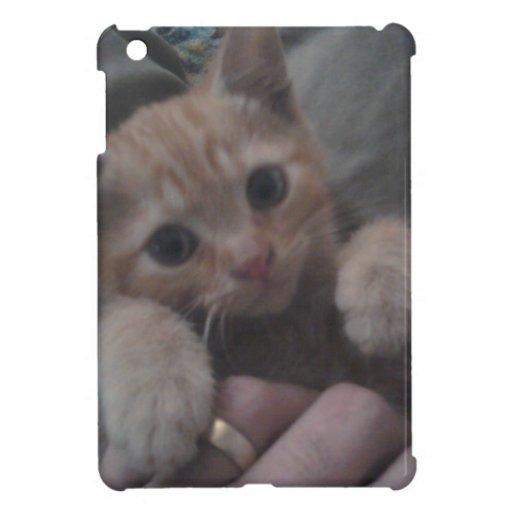 Sevi the Ginger Kitten iPad Mini Cases