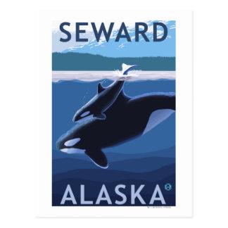 Seward, AlaskaOrca y escena del becerro Tarjetas Postales