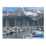Seward Harbor, Alaska Post Card