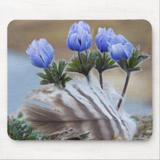 Seward Peninsula, Alaska, Arctic Wildflowers Mouse Pad