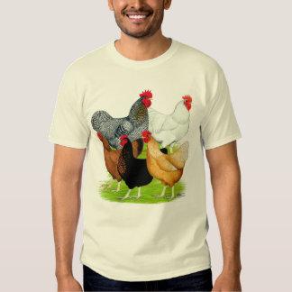 Sex-linked Chickens Quintet Tee Shirt