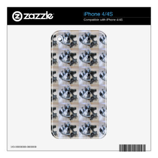 Sextant Pattern Decals For The iPhone 4S
