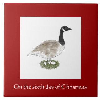 Sexto día de teja del navidad - ganso de Canadá