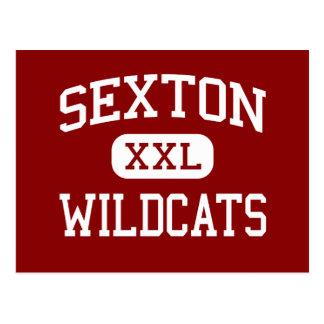 Sexton - Wildcats - Junior - Struthers Ohio Postcard