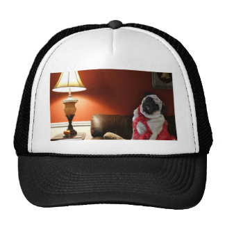 Sexy pug lingerie model, Misha, waiting for you. Trucker Hat