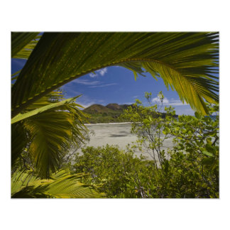 Seychelles, Curieuse Island, Laraie Bay Posters