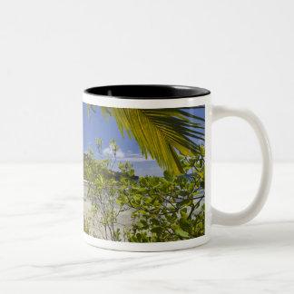 Seychelles, Curieuse Island, Laraie Bay Two-Tone Coffee Mug