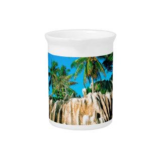 Seychelles encontradas isla tropical jarras
