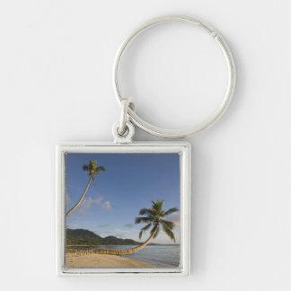 Seychelles, isla de Mahe, palma horizontal, Llaveros