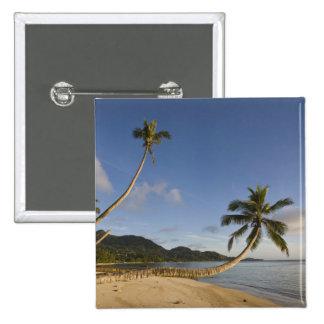Seychelles, isla de Mahe, palma horizontal, Pin