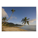 Seychelles, isla de Mahe, palma horizontal, Tarjeta De Felicitación