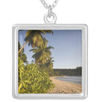 Seychelles, isla de Mahe, playa de Anse Takamaka, Grimpolas