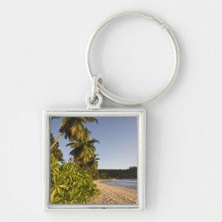 Seychelles, isla de Mahe, playa de Anse Takamaka, Llaveros