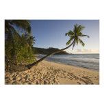 Seychelles, isla de Mahe, playa de Anse Takamaka,  Fotografias