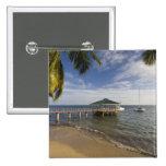Seychelles, isla de Praslin, Anse Bois de Rose, Pins