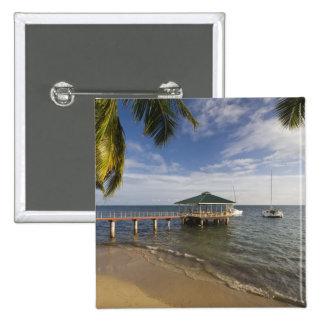 Seychelles, isla de Praslin, Anse Bois de Rose, Pin Cuadrado