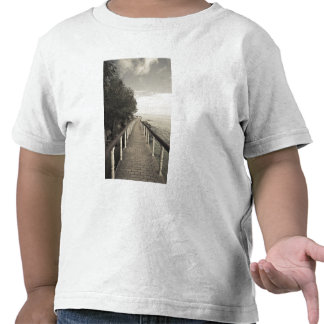 Seychelles, isla de Praslin, Anse Bois de Rose, Camisetas