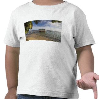 Seychelles, isla de Praslin, Anse Bois de Rose, Camiseta