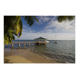 Seychelles, isla de Praslin, Anse Bois de Rose, Póster
