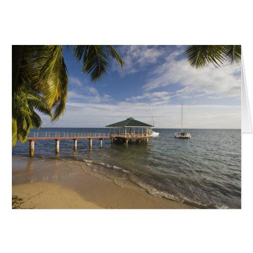 Seychelles, isla de Praslin, Anse Bois de Rose, Tarjeta De Felicitación
