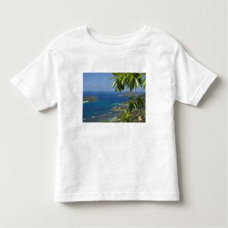 Seychelles, Island of Mahe. Western coast of Toddler T-shirt