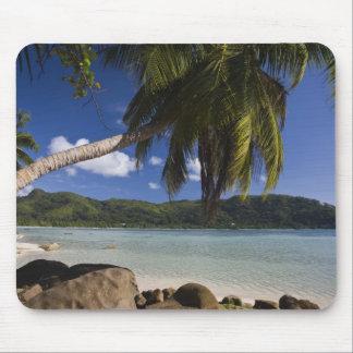 Seychelles, Mahe Island, Anse a la Mouche Mouse Pad