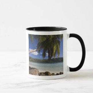 Seychelles, Mahe Island, Anse a la Mouche Mug
