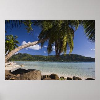 Seychelles, Mahe Island, Anse a la Mouche Poster