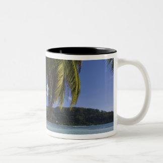 Seychelles, Mahe Island, Anse a la Mouche Two-Tone Coffee Mug