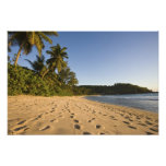 Seychelles, Mahe Island, Anse Takamaka beach, 2 Art Photo